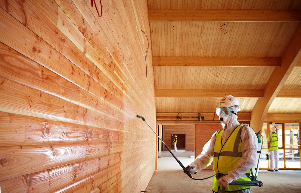 Как убрать грибок с деревянной поверхности